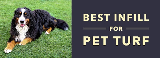 best infill for pet turf
